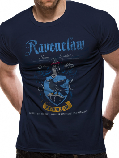 Ravenclaw Quidditch - Harry Potter