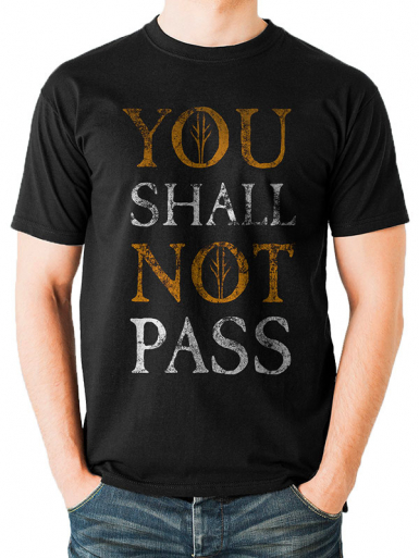 You Shall Not Pass - Lord Of The Rings Mens T-shirt