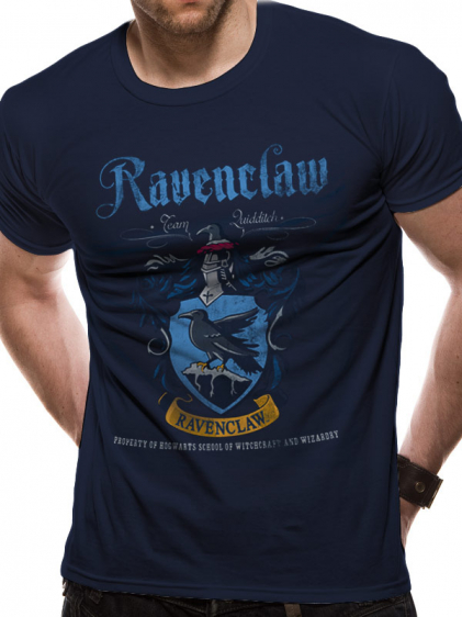 Ravenclaw Quidditch - Harry Potter 1