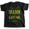 Dragon Of The Black Pool 1