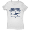 Great White Shark Tours 2