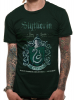 Slytherin Quidditch - Harry Potter 1