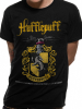 Hufflepuff Quidditch - Harry Potter 1