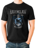 Ravenclaw - Harry Potter 1